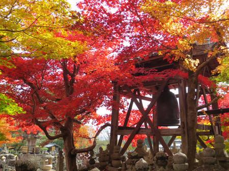 1211_adashino1492