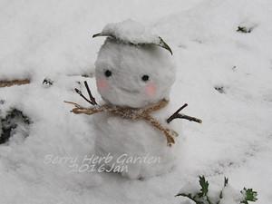 160124_snowman_p0018_