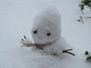 160125_snowman_1509